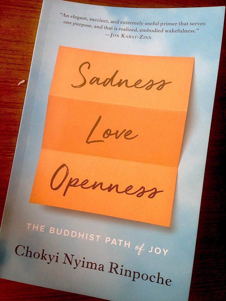 chokyi nyima rinpoche book