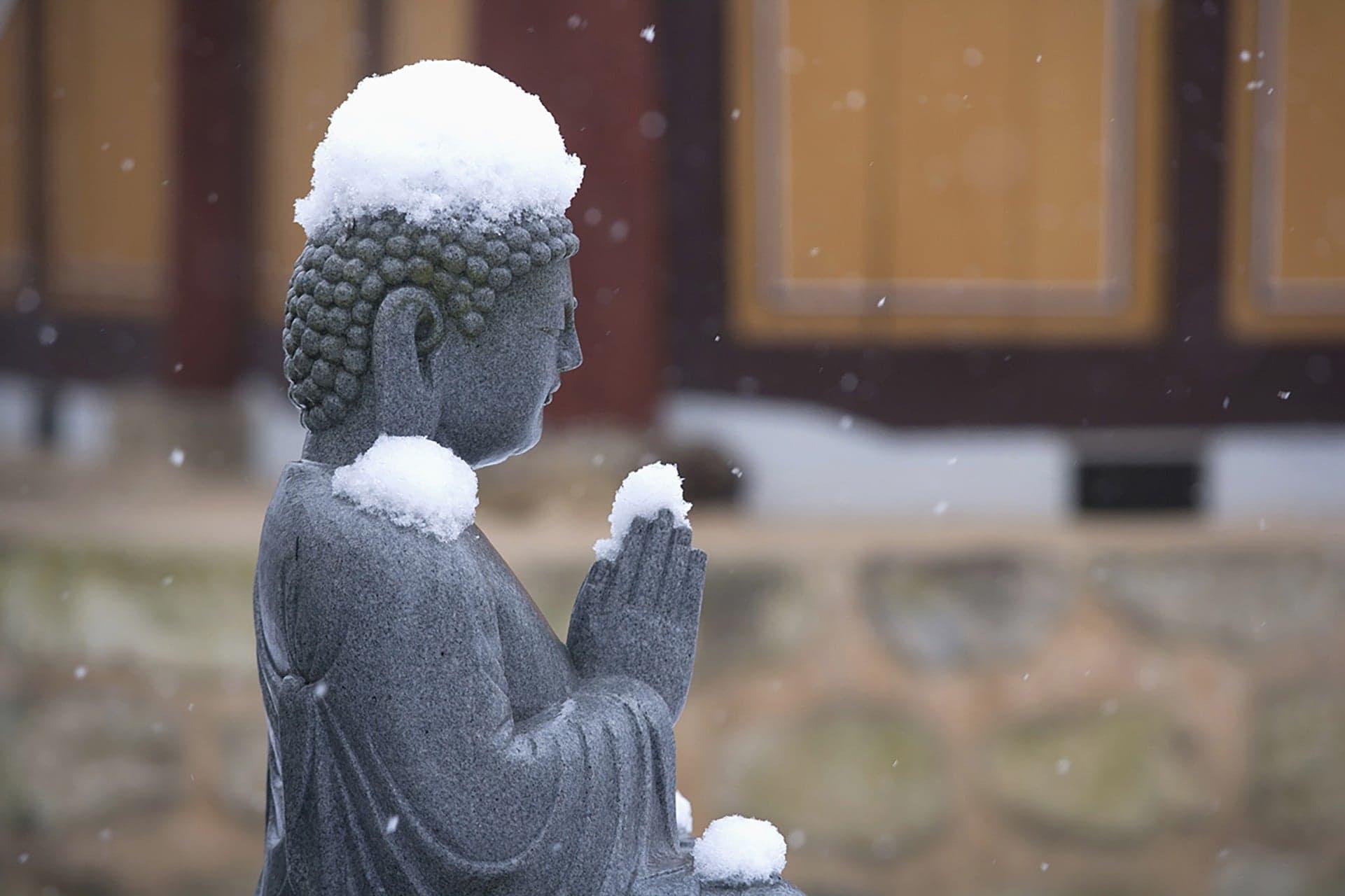 буддийские практики в киеве